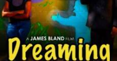 Dreaming in Color (2008)