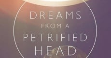 Filme completo Dreams From a Petrified Head