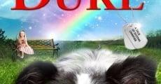 Duke (2012) stream