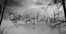 Película Dunderland