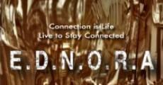 Película E.D.N.O.R.A.