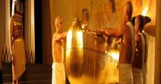 Ver película Egipto 3D: Secretos de las momias