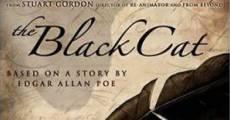 Ver película El gato negro (Masters of Horror Series)