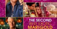 Filme completo The Second Best Exotic Marigold Hotel