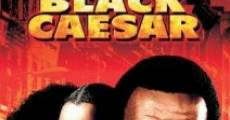 Black Caesar streaming
