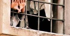 Ver película El prisionero de la reja de hierro