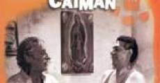 Ver película El sueño del caimán
