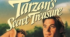 Il tesoro segreto di Tarzan