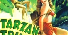 Le triomphe de Tarzan streaming