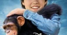 Jay und die Affenbande
