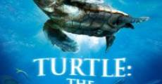 Filme completo Turtle: The Incredible Journey