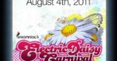 Electric Daisy Carnival Experience