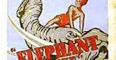 Filme completo O Menino e o Elefante
