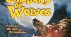 Filme completo A Companhia dos Lobos