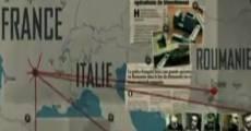 French Connections: Au coeur des nouvelles mafias (2013)