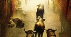 Encierro 3D: Bull Running in Pamplona (2012) stream