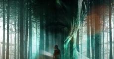 Entity (2012) stream