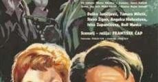 Ver película Entre guerrilleros