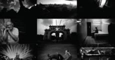 Entre lo sagrado y lo profano (2014) stream