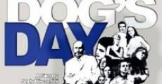 Every Dog's Day (2005) stream