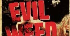 Película Evil Weed