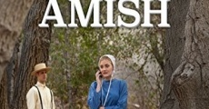 Filme completo Expecting Amish