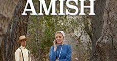 Expecting Amish streaming