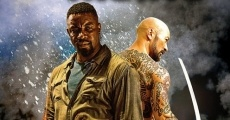 Falcon Rising film complet