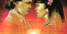 Ver película Fiebre de amor