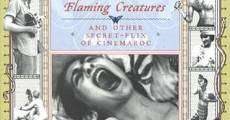 Filme completo Flaming Creatures