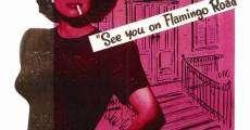Filme completo Flamingo Road