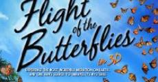 Flight of the Butterflies streaming