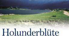 Holunderblüte (2007) stream