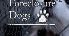 Película Foreclosure Dogs