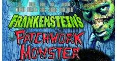Película Frankenstein's Patchwork Monster