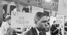 Filme completo Freedom Summer