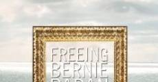 Freeing Bernie Baran (2010)