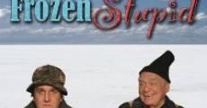 Película Frozen Stupid