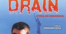 Ver película Fuga de cerebros
