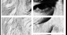 Película Gabriel Salazar: un historiador social