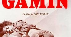 Película Gamín