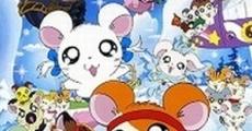 Película Gekijô ban Tottoko Hamutaro: Ôrora no kiseki - Ribon chan kiki ippatsu!