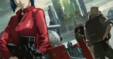 Filme completo Ghost in the Shell Arise: Border 2 - Ghost Whisper