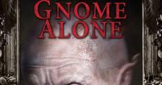 Película Gnome Alone