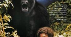 Gorillas in the Mist film complet