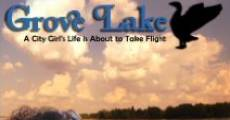 Grove Lake (2008) stream