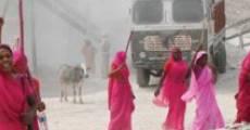 Película Gulabi Gang