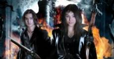 Hansel & Gretel: Warriors of Witchcraft (2013) stream