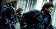 Harry Potter y las Reliquias de la Muerte - Parte I (2010) stream