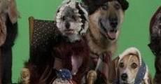 Ver película Heidi 4 Paws